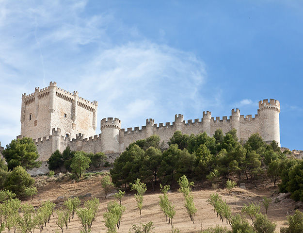 Castilla Termal Monasterio de Valbuena - Chateau de penafiel