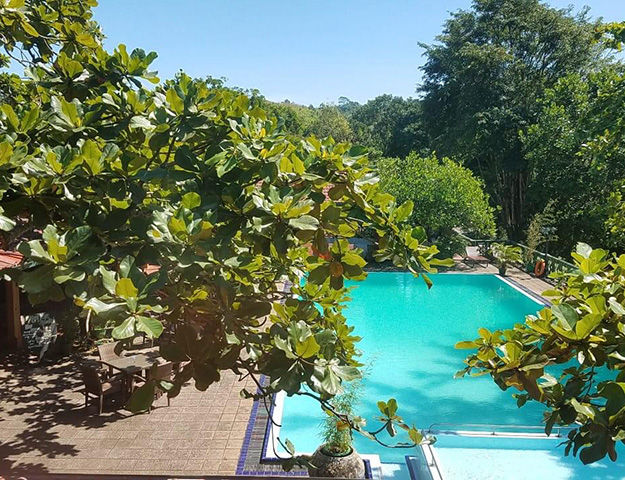 Tree of Life Nature Resort - Piscine