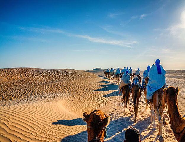 Radisson Blu Palace Resort & Thalasso Djerba - Excursion_chameau_desert