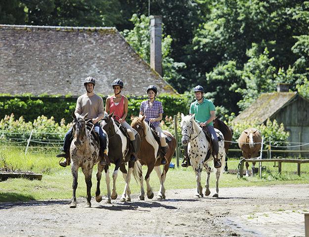 Center Parcs Domaine les Bois-Francs - Equitation