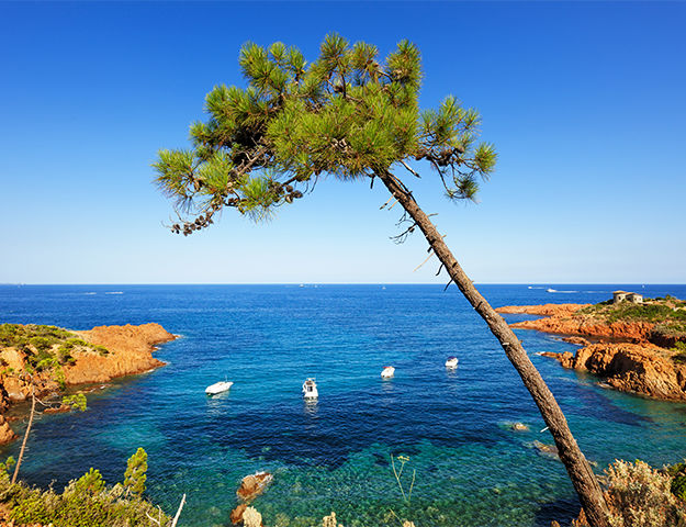 Mercure Fréjus - Esterel et mer mediterranee