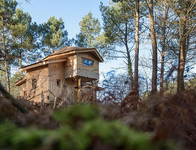 Center Parcs Domaine du Bois aux Daims - Maison dans les arbres