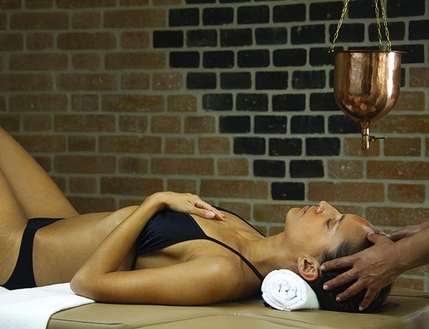 Les Loges du Parc - Massage du cuir chevelu