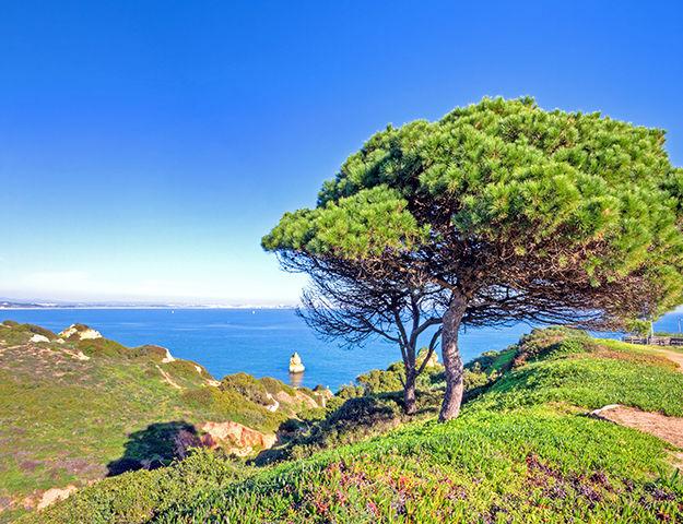 Cascade Wellness & Lifestyle Resort - Algarve pres de lagos